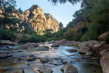 Zion-Nationalpark USA von Leonie Boverhuis