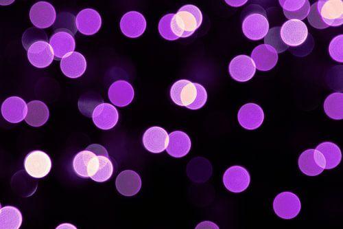 Paarse lichtjes van