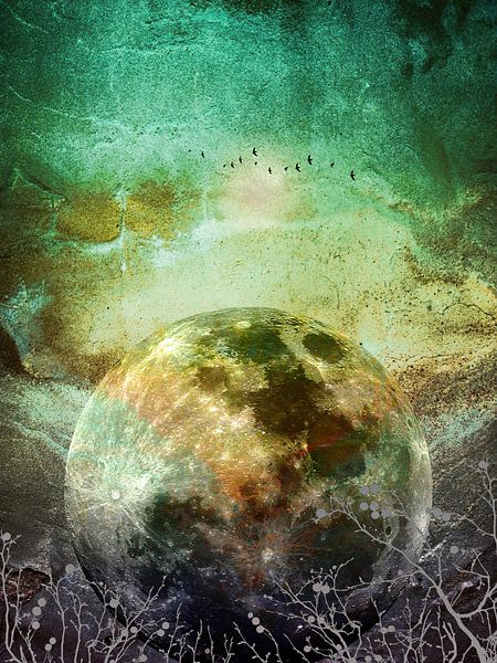 MOON under MAGIC SKY X van Pia Schneider