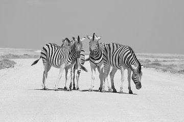 Zebras im Etoscha-Nationalpark von Ronald Gorter