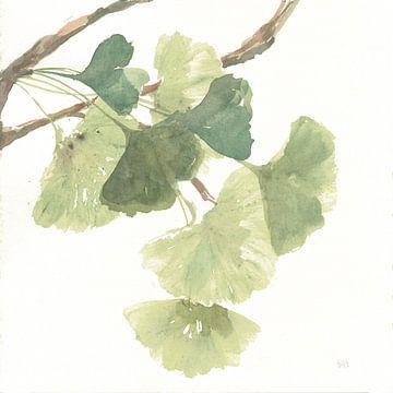 Gingko Leaves I auf Weiß, Chris Paschke von Wild Apple