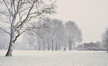 Wandelen in de sneeuw van Corinne Welp