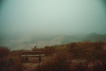 Fog van Yana Spiridonova
