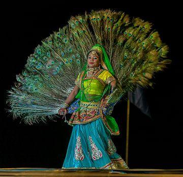 India: Desert Festival 2017 (Jaisalmer) van Maarten Verhees