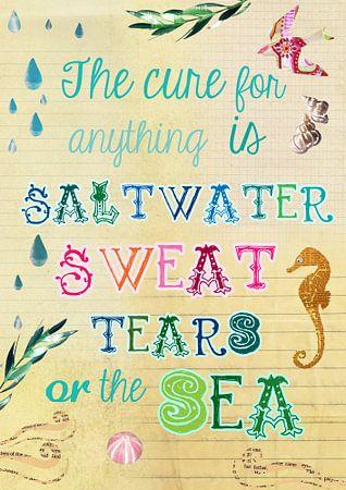 Saltwater Collage