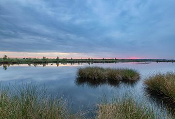 Vogels in het water tijdens rustige bewolkte zonsopkomst van Marcel Kerdijk