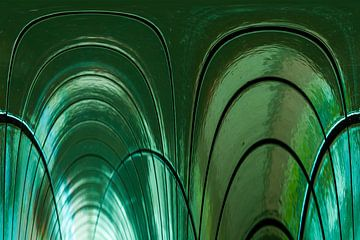 Tunnelvisie van Qeimoy