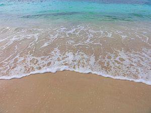 Atlantische oceaan van Lotte Veldt