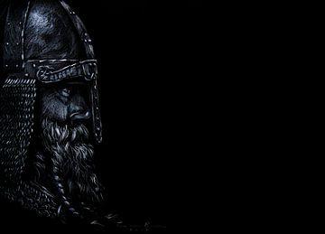 Vigilant Viking von Ton van Buuren