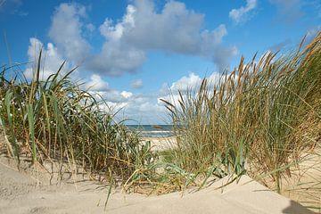Zeezicht door het helmgras vanuit de duinen van Ad Jekel