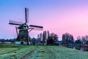Schaapweimolen in Rijswijk