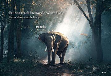 Inspiratiefoto van een olifant uit azie. von henrie Geertsma