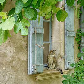 Als een kat in Frankrijk van Christa Thieme-Krus