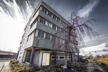 Slooppand Nijmegen van denk web