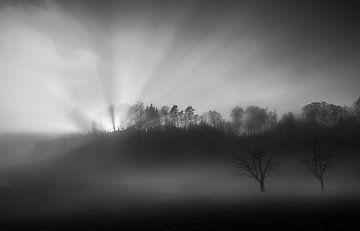 De zon in de mist, Nic Keller van 1x