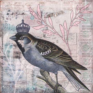 Der König der Vögel von Andrea Haase