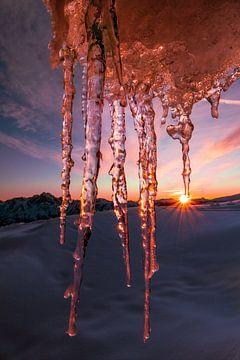 Eiszapfen bei Sonnenuntergang - Zettersfeld - Osttirol - Österreich