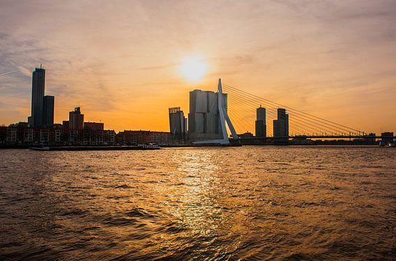 Erasmusbrug Rotterdam avondlicht.
