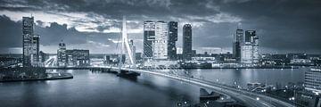 Skyline Rotterdam Erasmusbrug - Metallic Grey van