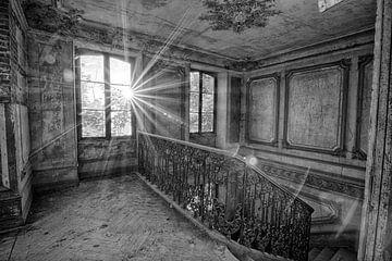 Chateau Secession (zwart-wit) van Rens Bok