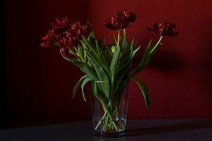 Tulpen met vensterlicht van links van Paula van der Post