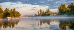 Morgenglühen im Biesbosch