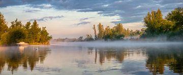 Morgenglühen im Biesbosch von Frans Lemmens