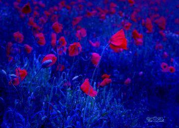 Red in Blue von Vera Laake