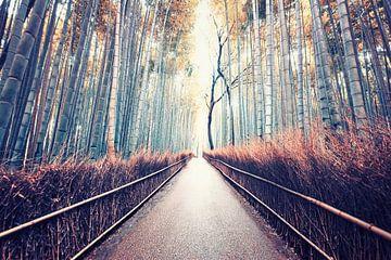 Das verborgene Kyoto von Manjik Pictures