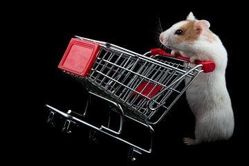 Hamster gaat shoppen von Joke Beers-Blom