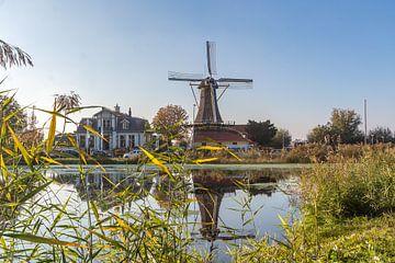 Windmolen 'de Ster' te Rotterdam van Stephan Neven