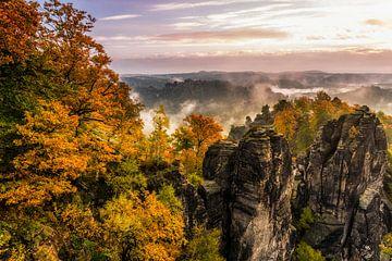 Herbstmorgen von Daniela Beyer