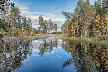 Miroir d'automne sur Torfinn Johannessen