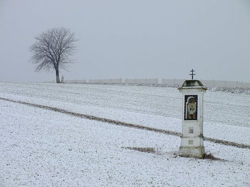 Winter im Weinviertel von