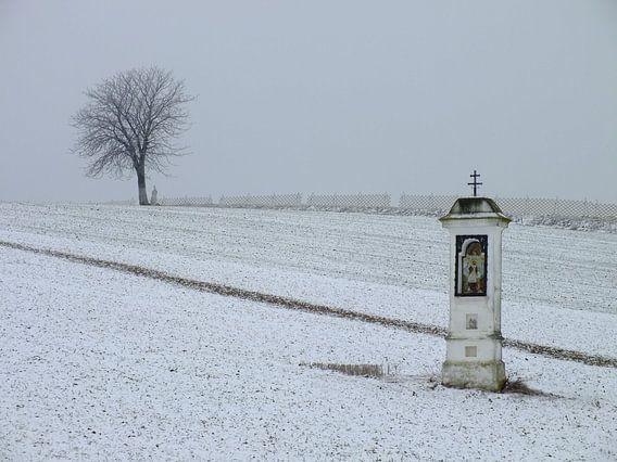 Winter im Weinviertel von Ilona Picha-Höberth