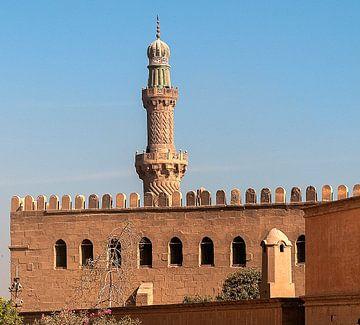Moskee van Mohammed Ali van Maarten Verhees