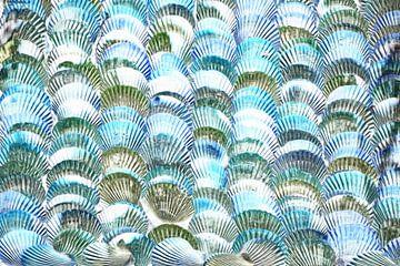 Muscheln in Blau und Grau von Maurice Dawson