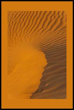 Zandduinen van René Roos