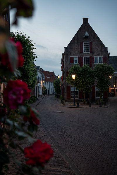 Huis met rozen (II) van Manuuu S