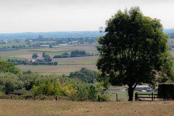 Flämischer Panoramablick von Tania Perneel