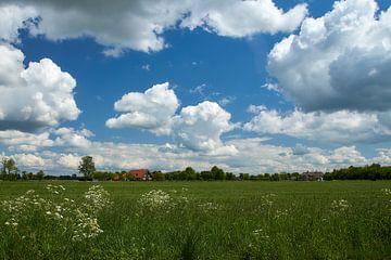 Landelijk Nederland van Ad Jekel