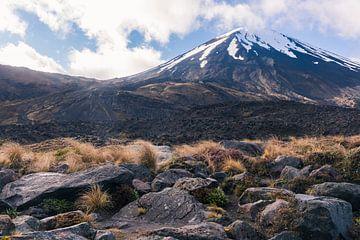 Mount Doom in Tongariro Nationaal Park, Nieuw-Zeeland van Linda Schouw