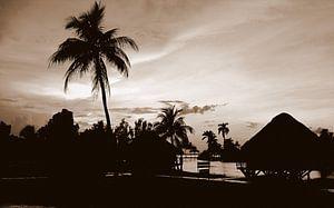 Guama 2, Cuba van