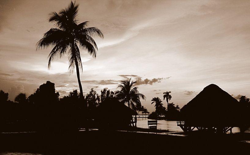 Guama 2, Cuba van Rik Crijns