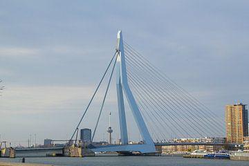 Iconen van Rotterdam van Rob Rijfkogel
