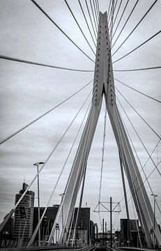 Le pont Erasmus de Rotterdam en noir et blanc sur Marjolein van Middelkoop