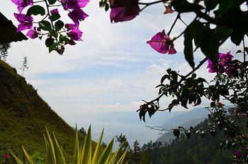 Uitzicht in de bergen van Esther Kruik