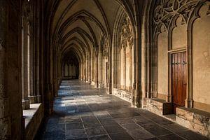 Gang in de Dom van Utrecht