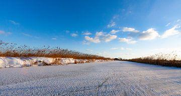 Of clouds and ice van Marieke van Tienhoven