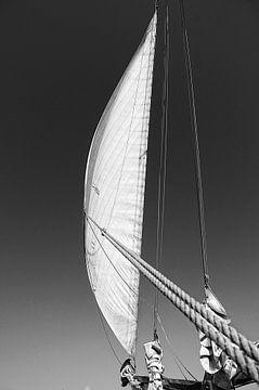 Voor de wind von Albert Wester Terschelling Photography